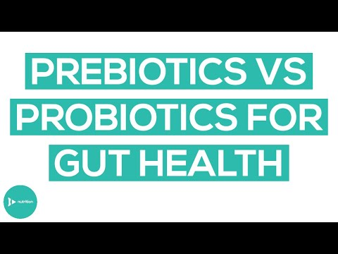 Are Prebiotics and Probiotics the Answer To Better Gut Health?