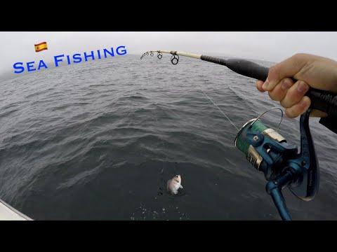 Sea Fishing In Fisterra, Spain   Fishing During Lockdown