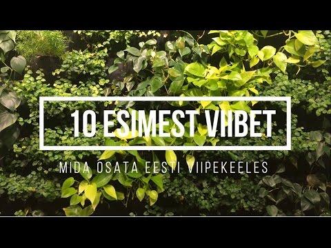 10 ESIMEST VIIBET, mida osata eesti viipekeeles