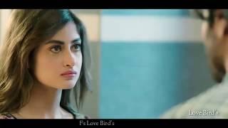TERI KHUSHI NA HO SAMIL   SAD FS LOVE BIRDS STATUS VIDEO