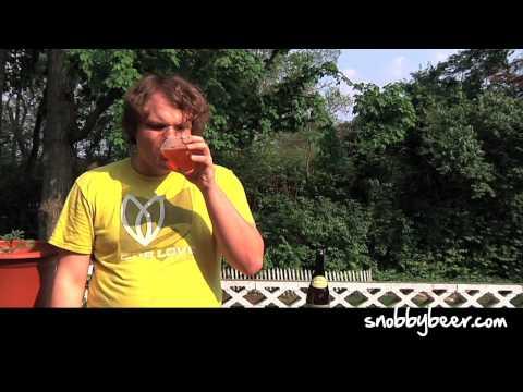 Dogfish Head Sah'Tea - Snobby Beer Reviews