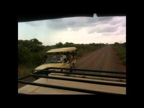 Amboseli National Park Safaris & Holiday Activities