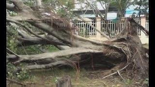 Lốc lớn gây thiệt hại nặng ở huyện Đông Hải, Bạc Liêu.