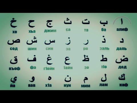 скачать видео арабски борзый