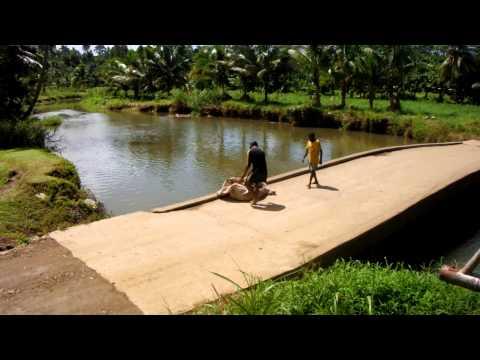 River dumping in Fiji
