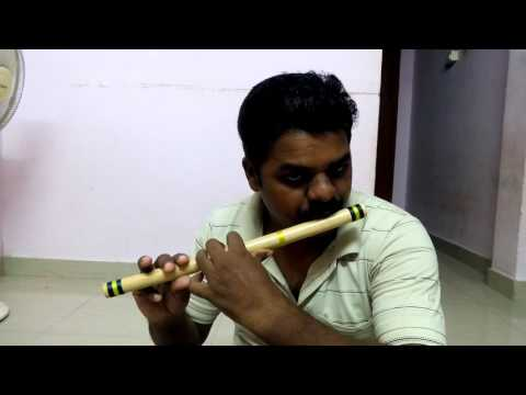 I Giri nandhini song in Flute & jalatharangam by M