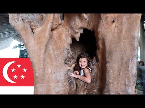Exploring Singapore (WK 297.3) | Bratayley