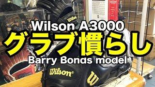 「グラブ慣らし」Wilson A3000 バリー・ボンズ モデル #1814