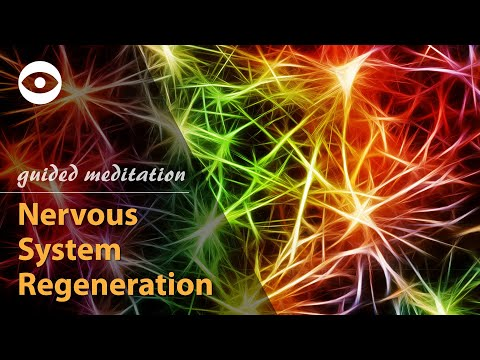 Nervous System Regeneration - guided meditation (hypnosis for phisical healing)
