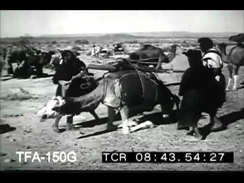 Desert Nomads, 1949