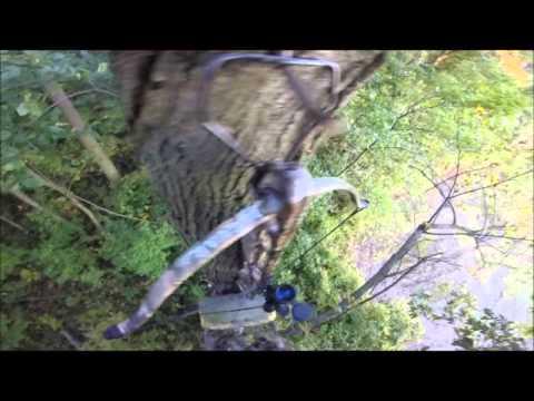 175 lb Jaguar Crossbow Hunting