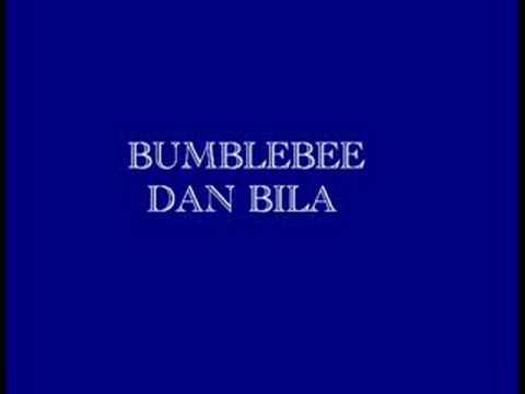 Bumblebee-Dan Bila