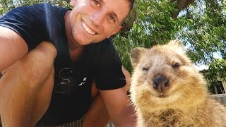 THE HAPPIEST ANIMAL ON THE PLANET - Quokkas of Rottnest Island