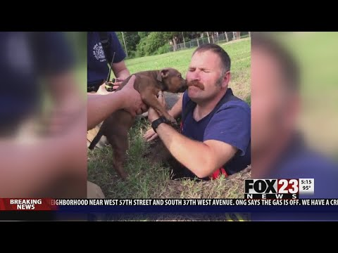 VIDEO: Tulsa firefighter rescues puppy from sewer