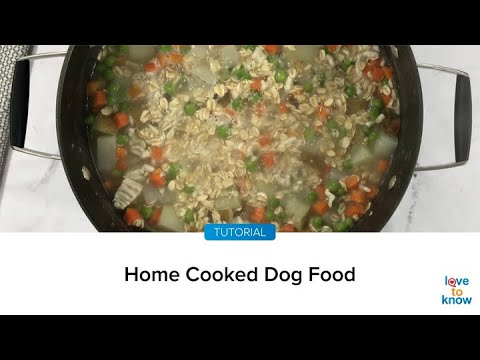 Tips for Making Home Cooked Dog Food