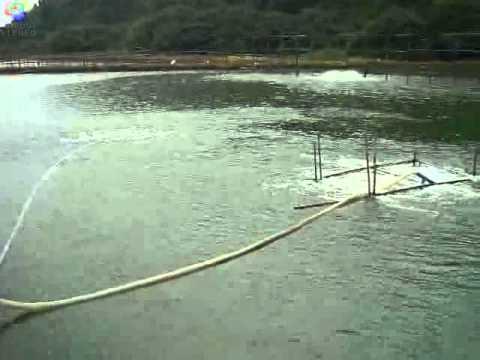 Aero Tube Diffuser For Aquaculture Youtube
