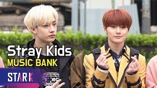 스트레이키즈, 9인 9색 미로 같은 매력 (Stray Kids, MUSIC BANK)