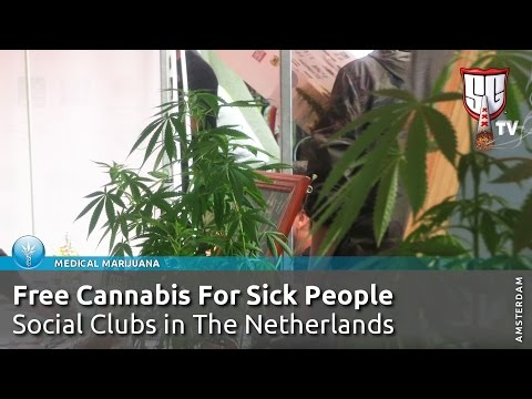 Free Cannabis For Sick People - Social Clubs in The Netherlands - Smokers Guide TV Amsterdam