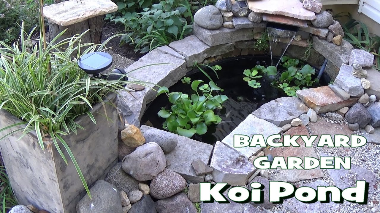 Small backyard garden koi goldfish pond update part 1 for Koi pond setup