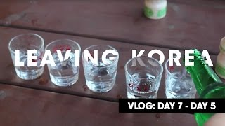 Leaving Korea | VLOG: Day 7 - 5 | Sheep, Soju, and Shenanigans in Hongdae