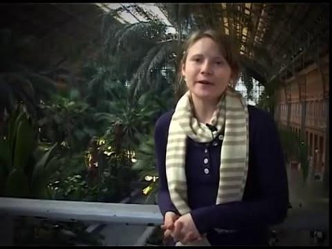 Study Abroad in Madrid - Alumni Testimonial