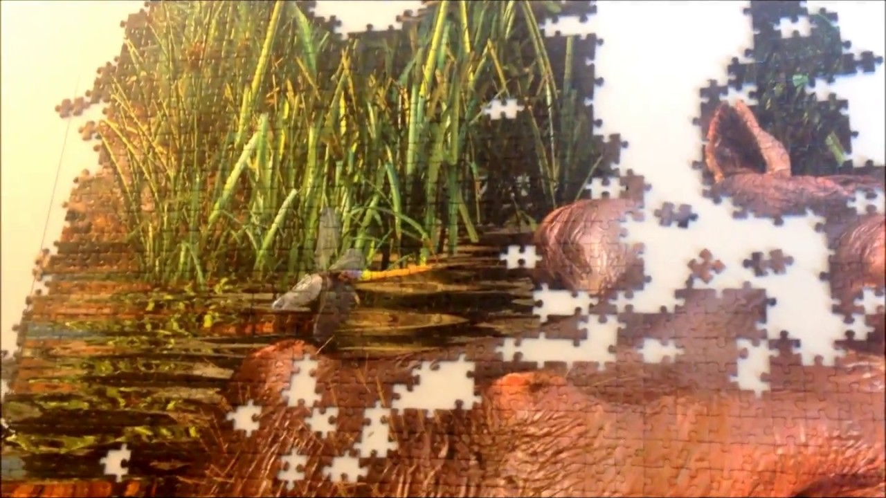 & Doug Lily Pad Journey Jigsaw Puzzle