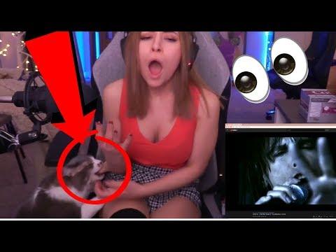 Alinity Cat Revenge