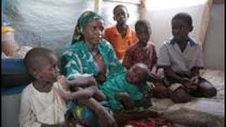 Northeast Nigeria: Extremism and the Struggle to Rebuild