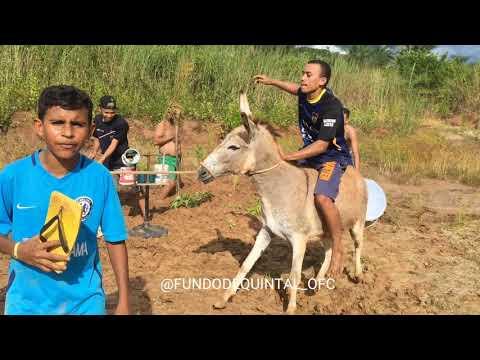 FUNDO DE QUINTAL OFC - MILU - GUSTTAVO LIMA(Vídeo Oficial)
