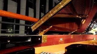 愛久見人心 ( 原唱  梁靜茹 Fish Leong )    Piano Cover 2: Vera Lee