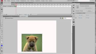 Видео уроки Flash. Методы gotoAndPlay и gotoAndStop в ActionScript 3.0