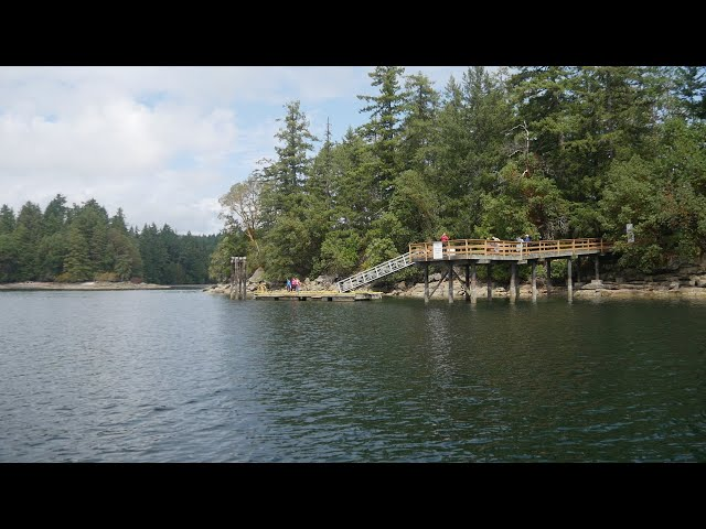 Take a tour of the newly CVRD acquired Bute Island.  a 2.2-acre island in Ladysmith Harbour.