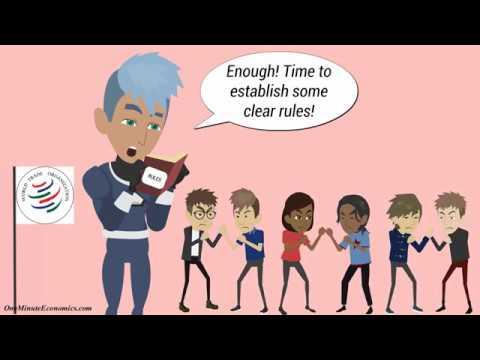 The World Trade Organization (WTO) Explained in One Minute