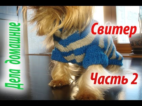 Смотреть Свитер для собаки.Часть2. Одежда для собак своими руками на канале''Дела домашние''.