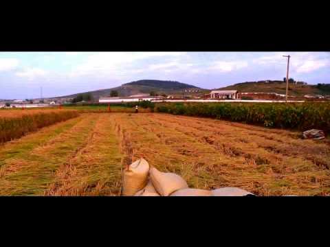 North Korea - Documentary(Truth Behind The Scenes)