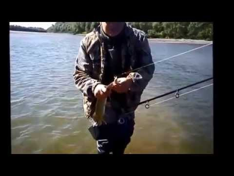 рыбалка в сургуте на щуку