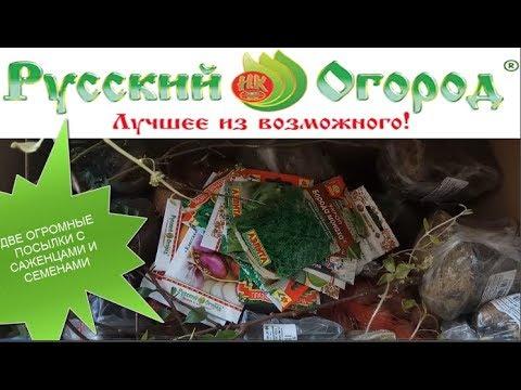 Русский огород 2019\Две огромные посылки с саженцами и семенами