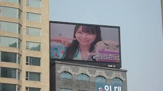 [서폿후기] '프로듀스48' NMB48 시로마 미루(白間美瑠) 생일 축하 전광판.