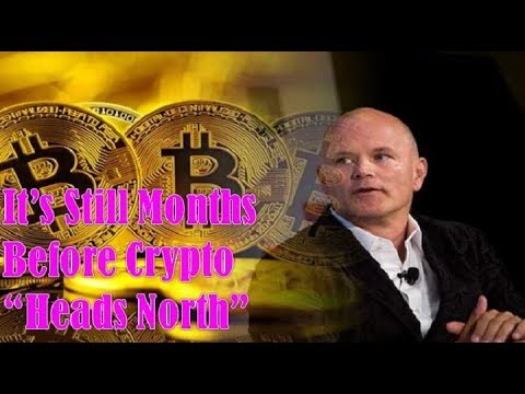 "Bitcoin Bull Novogratz! It's Still Months Before Crypto ""Heads North"""