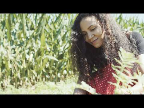 DOWNLOAD MP4 Video: ESTAR – Riding On The Clouds [Official]