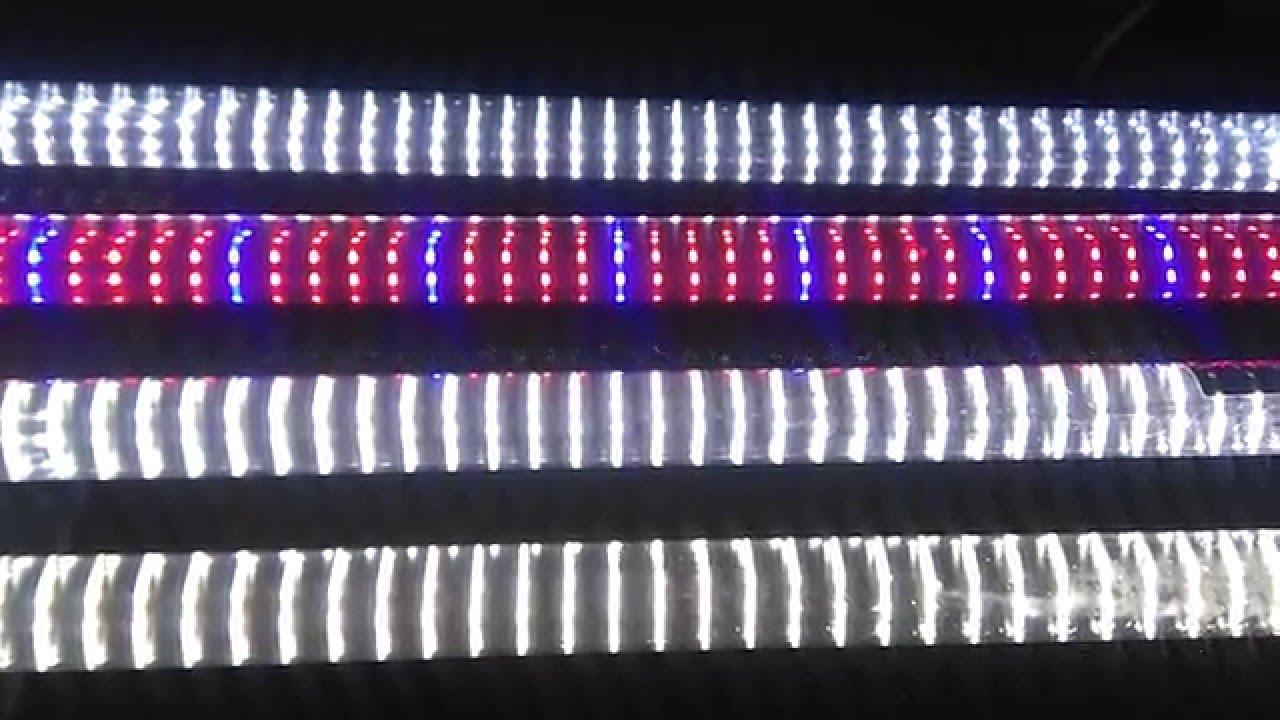 05akwarium 450l świetlówki Led światła Białedzienne Naturalne światło Dla Roślin I Wybarwienie Ryb
