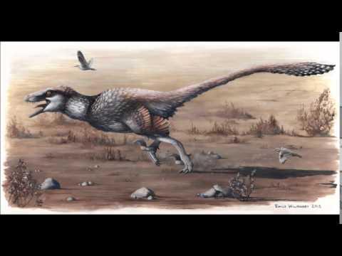 CAW Dinosaur Discussion Ep. 41: - Dakotaraptor Steini