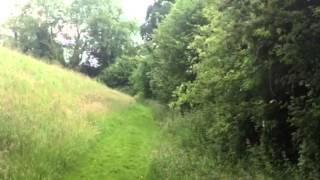 Cocker Spaniel Gundog Training -  Rabbit Hunting