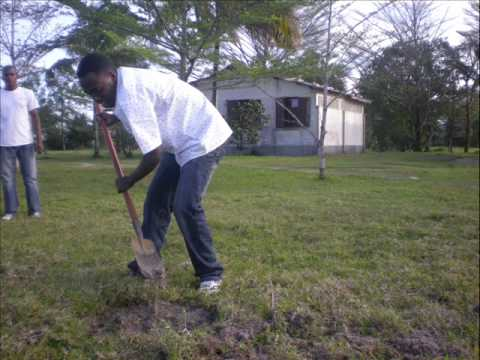 BUEC Environmental Activity pictures