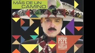Amor En Secreto-Pepe Aguilar/Mas De Un Camino (2012)