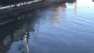 Raising sunken boat