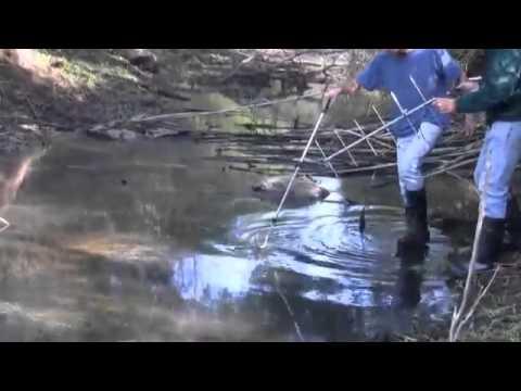 Wildlife Tracking Equipment Manufacturer