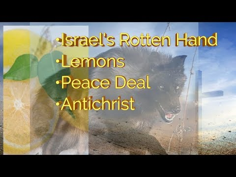 Dream - Airport, Skeleton Hand with Lemons, Peace Deal, Israel