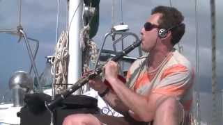 David Rothenberg plays live with humpback whales in Hawaii