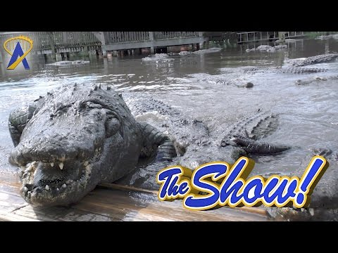 Attractions - The Show -  Gatorland; Star Wars Celebration; SeaWorld; news - April 20, 2017